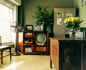 A vintage office with bright green colored walls, vintage wood furniture, a large plant and a vase with white roses.